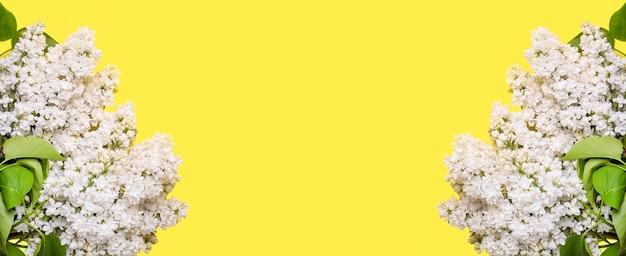 Lila bloemen op gele achtergrond. frame voor tekst. banner