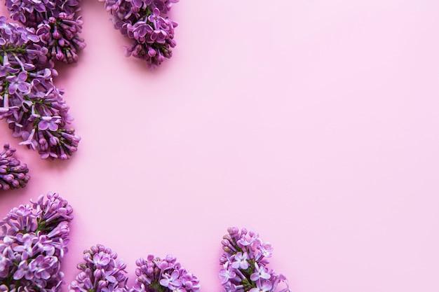 Lila bloemengrens op roze