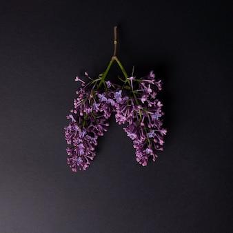 Lila takken die op longen lijken. op een zwarte achtergrond. minimalistisch concept.