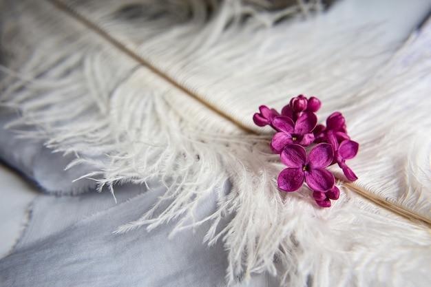 Lila violette bloemen op een witte struisvogelveer. een lila geluk - bloem met vijf bloembladen tussen de vierpuntige bloemen van felroze lila (syringa) de magie van lila bloemen met vijf bloembladen.