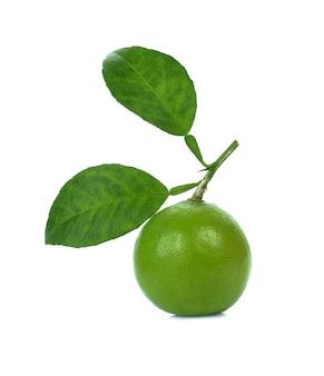 Limoenen geïsoleerd met blad op witte achtergrond