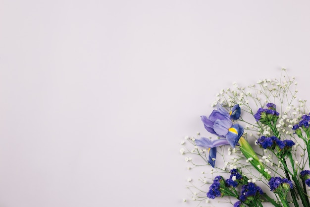 Limonium; gypsophila; en irisbloem op witte achtergrond