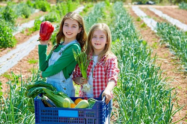 Litte kid boer meisjes in groentenoogst