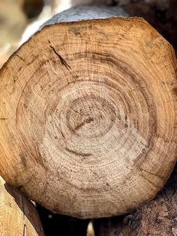 Logboeken gestapeld in een close-up van een stapel in een snee in het bos.