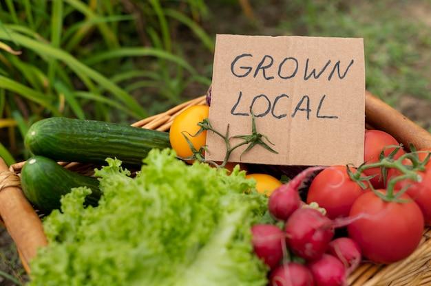 Lokaal geteelde groenten in mand
