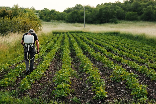 Long shot werkende landbouwer