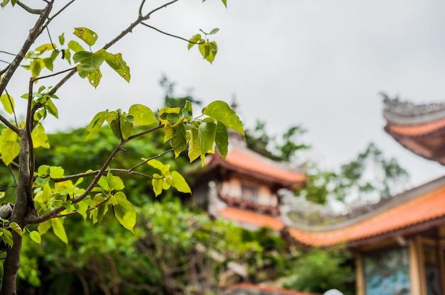 Long son-pagode in nha trang, vietnam