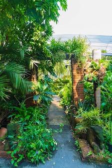 Loop weg met veel planten