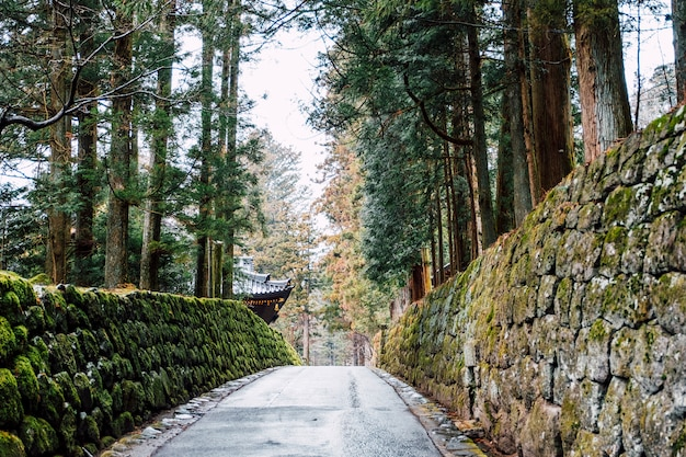 Loopbrug naar de tempel van japan