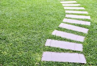Loopbrug op groen gazon Kopieer de ruimte