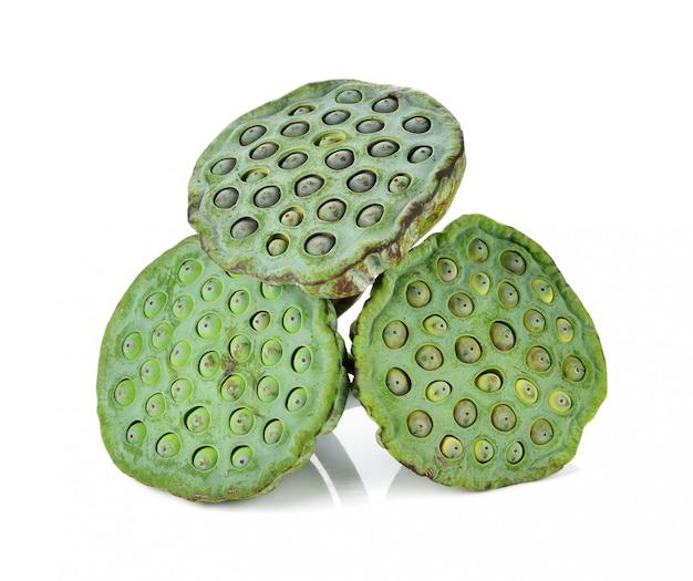 Lotus-groene zaden geïsoleerd op wit.