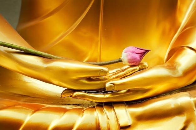 Lotus in hand afbeelding van boeddha