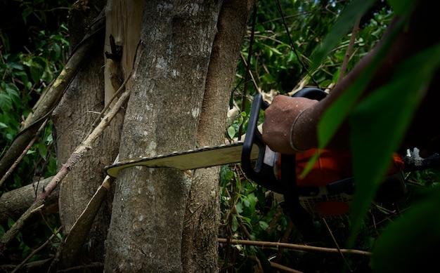 Low key foto van kettingzaag het snijden van de boom close-up van houthakker zagen kettingzaag in beweging zaagsel vliegen naar de zijkanten