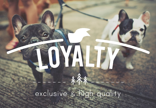 Loyaliteit eerlijke toewijding respect oprecht vertrouwen concept