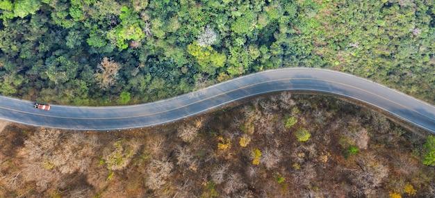 Lucht hoogste mening van een weg in het bos, het concept droge bossen en groene bossen