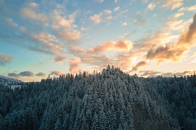 Lucht winterlandschap met spruse bomen van besneeuwde bossen in koude bergen in de avond.