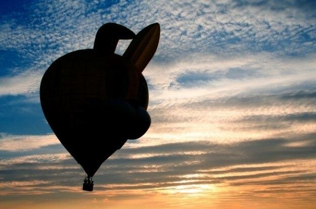 Luchtballon silhouet
