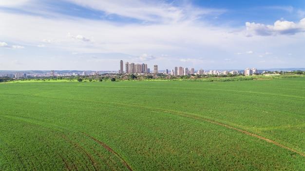 Luchtbeeld van suikerrietaanplanting dichtbij gebied van een grote stad.