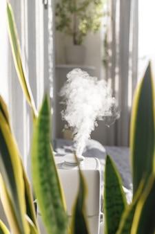 Luchtbevochtiger in het appartement tussen de planten lucht meesleuren zuivering in het stookseizoen