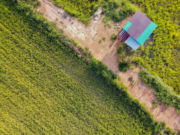 Luchtfoto, a-hut in de groene padievelden op het platteland, thailand