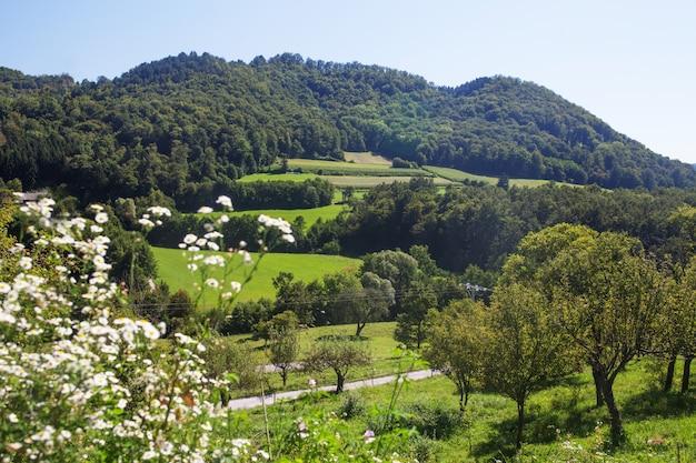 Luchtfoto boslandschap europees bos. prachtig berglandschap, met bergtoppen bedekt met bos.