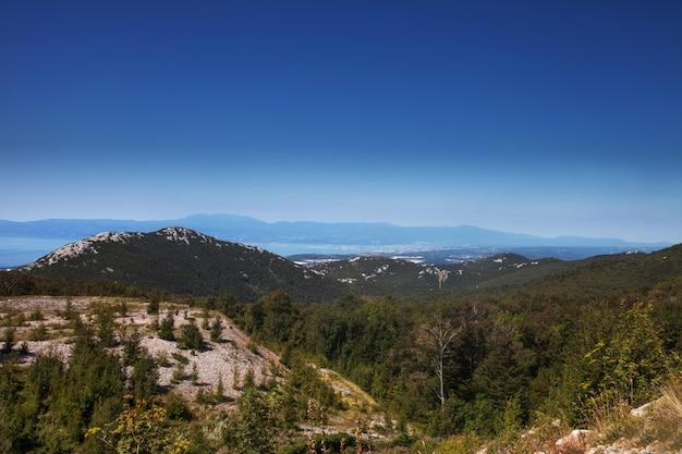 Luchtfoto boslandschap europees bos. prachtige berglandschap, met bergtoppen bedekt met bos en blauwe hemel