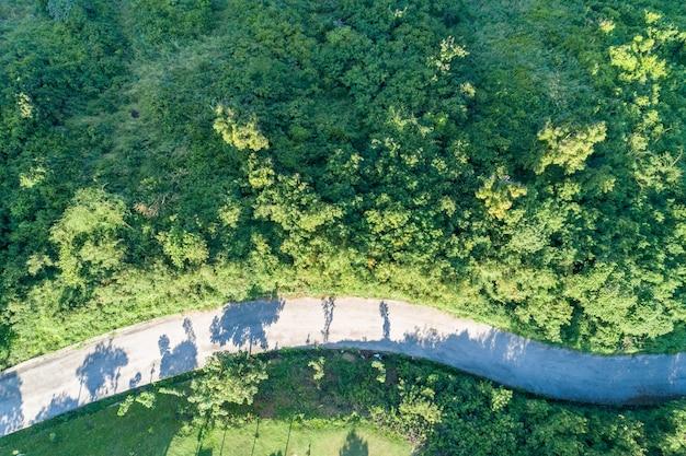 Luchtfoto bovenaanzicht asfaltwegkromme in het groene bos.