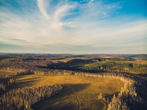Luchtfoto bovenaanzicht van landweg door velden en bossen in de zomer. klem. bovenaanzicht van het bosgebied met weg.