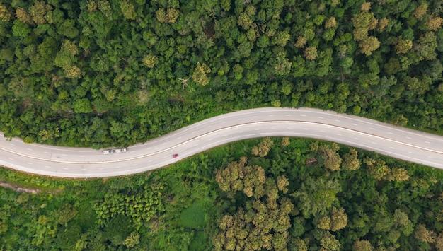 Luchtfoto bovenaanzicht van pad weg in bos, uitzicht vanaf drone