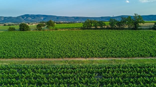 Luchtfoto bovenaanzicht van wijngaarden landschap van bovenstaande achtergrond, zuid-frankrijk