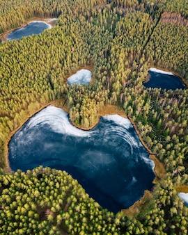 Luchtfoto drone foto van een gedeeltelijk bevroren meer omgeven door bos
