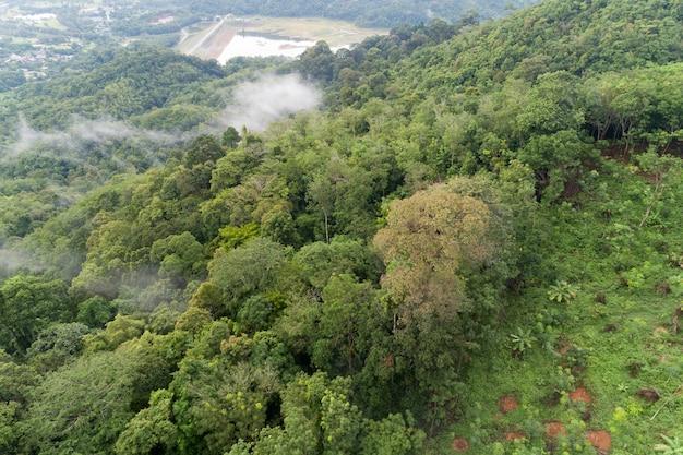 Luchtfoto drone shot van tropisch regenwoud in de bergen