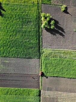 Luchtfoto landbouwwerk in het veld, een tractor in het veld.