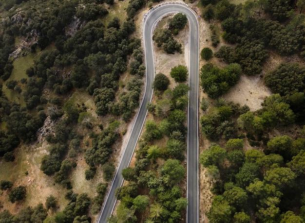 Luchtfoto landschapsmening van bossen