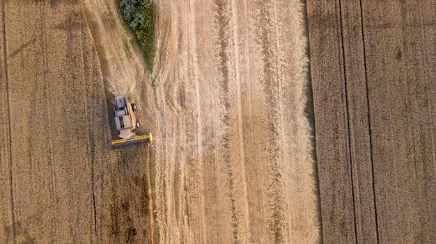 Luchtfoto op de maaidorser die werkt op het grote tarweveld