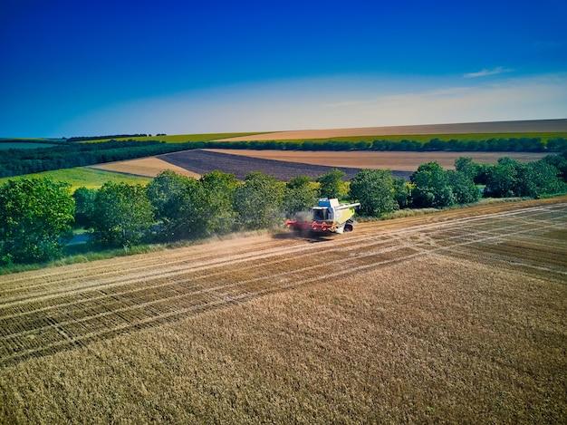 Luchtfoto op maaidorser verzamelt de tarwe bij zonsondergang. oogsten van graanveld, oogstseizoen. bekijk op harvester in het gedeeltelijk geoogste veld. zomer, moldavië, europa.