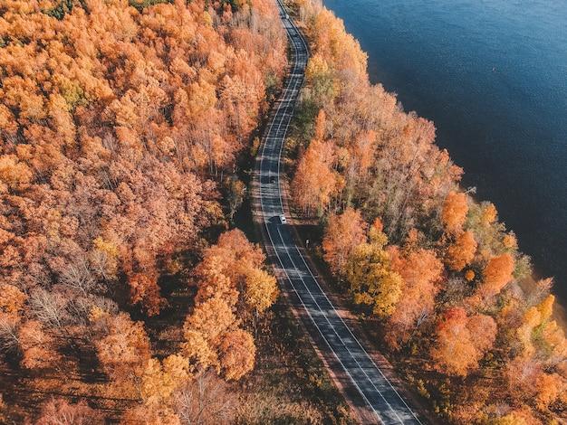 Luchtfoto op ochtendlichten in het bos. kleurrijke bomen en blauw meer van hierboven, windende weg. rusland, st. petersburg