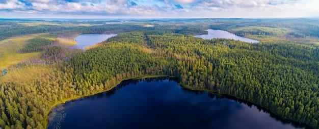Luchtfoto panoramisch uitzicht op bossen en meren van de regio karelië, rusland