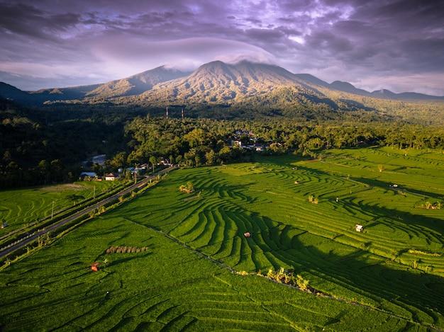 Luchtfoto schoonheid landschap rijstvelden indonesië met verbazingwekkende bergketen met blauwe hemel