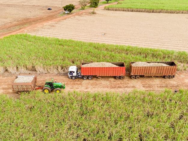 Luchtfoto suikerriet veld in brazilië.