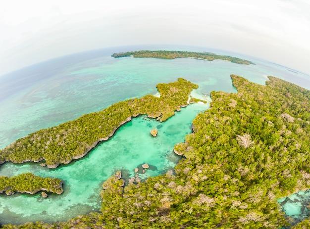 Luchtfoto: tropisch paradijs ongerepte kustlijn regenwoud blauwe meer op bair island