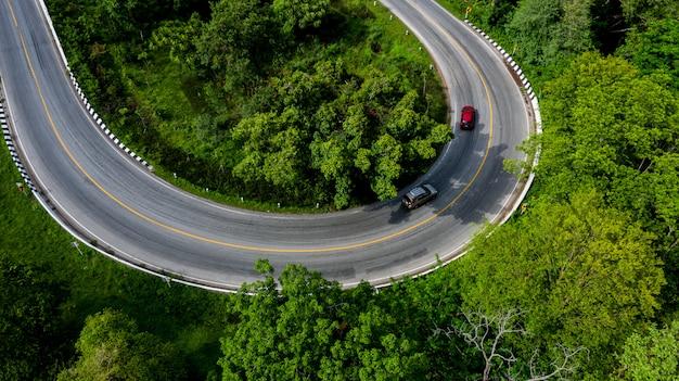 Luchtfoto uitzicht over tropische boom bos met een weg door met auto, forest road.