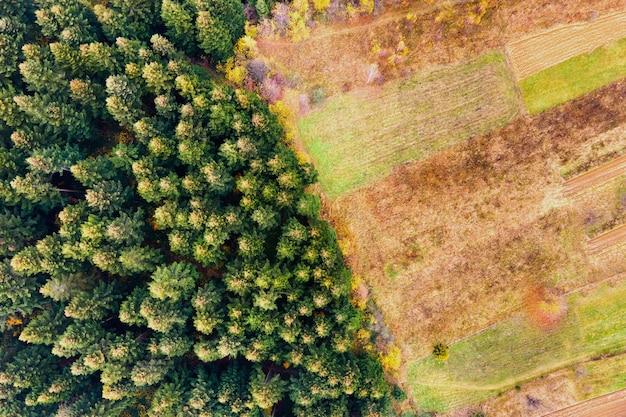 Luchtfoto van berg dennenbos met kale ontbossing gebied van gekapte bomen.