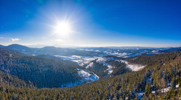 Luchtfoto van betoverend schilderachtig landschap van slanke hoge sparren die groeien op besneeuwde heuvels op een zonnige winter en heldere dag tegen een blauwe hemel.