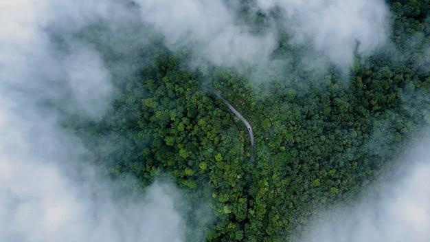 Luchtfoto van de bergweg, de straat van bovenaf door een mistig bos in het regenseizoen, luchtfoto die door de wolken vliegt met mist en bomen.