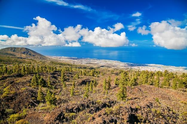 Luchtfoto van de dennenbossen op de westelijke hellingen van de vulkaan teide, tenerife, canarische eilanden
