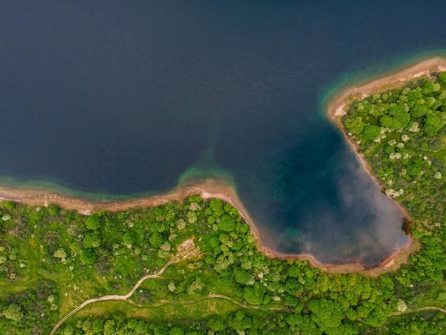 Luchtfoto van de kust van het meer met bos