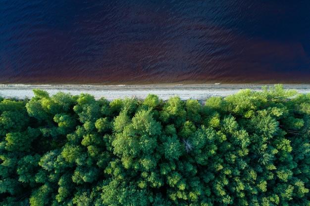 Luchtfoto van de lege oever van het meer met bos
