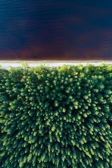 Luchtfoto van de lege oever van het meer met naaldbos