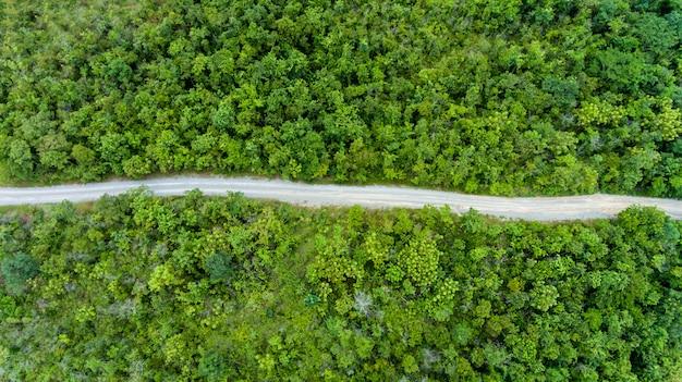 Luchtfoto van de weg door bos.